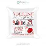 Personalized Ladybug Newborn Birth Stats Pillow, Birth Announcement Pillow, Personalized Nursery Pillow, Ladybug Birth Details Pillow